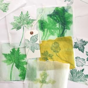 Botanical mono-printing